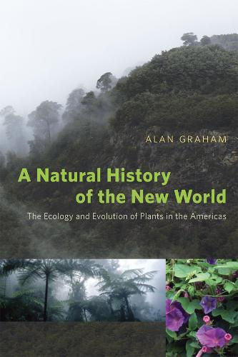 A Natural History of the New World: The Ecology and Evolution of Plants in the Americas (Paperback)