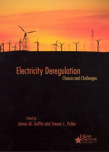 Electricity Deregulation: Choices and Challenges (Hardback)