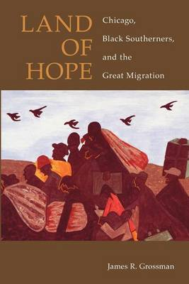 Land of Hope: Chicago, Black Southerners and the Great Migration (Paperback)