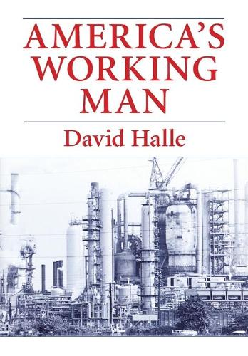 America's Working Man: Work, Home and Politics Among Blue-collar Property Owners (Paperback)