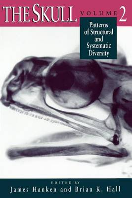 The Skull: Patterns of Structural and Systematic Diversity v. 2 (Paperback)