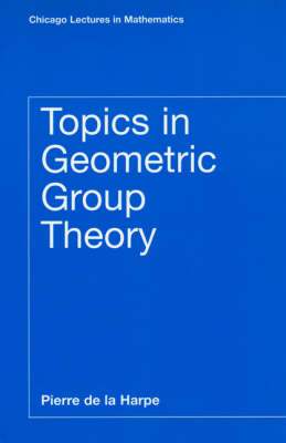 Topics in Geometric Group Theory - Chicago Lectures in Mathematics (Paperback)