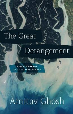 The Great Derangement: Climate Change and the Unthinkable (Hardback)