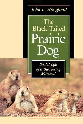 The Black-tailed Prairie Dog: Social Life of a Burrowing Mammal - Wildlife Behaviour & Ecology S. (Paperback)
