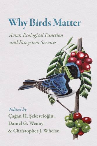 Why Birds Matter: Avian Ecological Function and Ecosystem Services (Paperback)