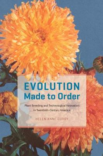 Evolution Made to Order: Plant Breeding and Technological Innovation in Twentieth Century America (Hardback)