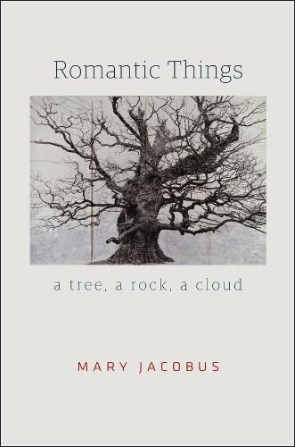 Romantic Things: A Tree, a Rock, a Cloud (Hardback)