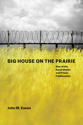 Big House on the Prairie: Rise of the Rural Ghetto and Prison Proliferation (Paperback)