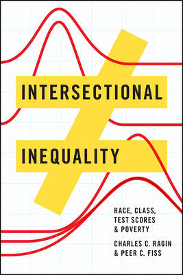 Intersectional Inequality: Race, Class, Test Scores, and Poverty (Paperback)
