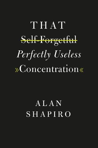 That Self-Forgetful Perfectly Useless Concentration (Hardback)
