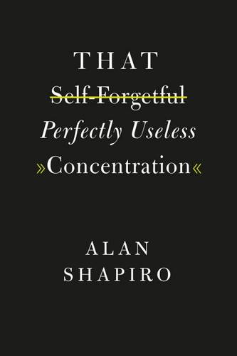 That Self-Forgetful Perfectly Useless Concentration (Paperback)
