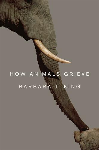 How Animals Grieve (Hardback)