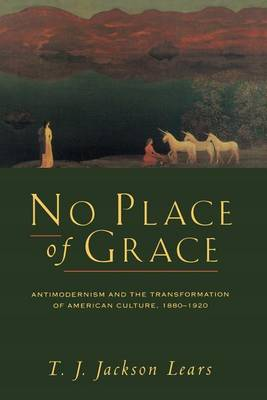 No Place of Grace: Antimodernism and the Transformation of American Culture, 1880-1920 (Paperback)