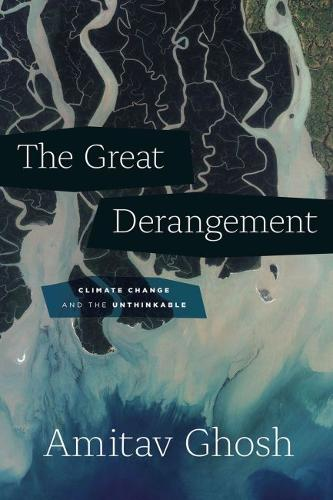The Great Derangement: Climate Change and the Unthinkable - Berlin Family Lectures (Paperback)
