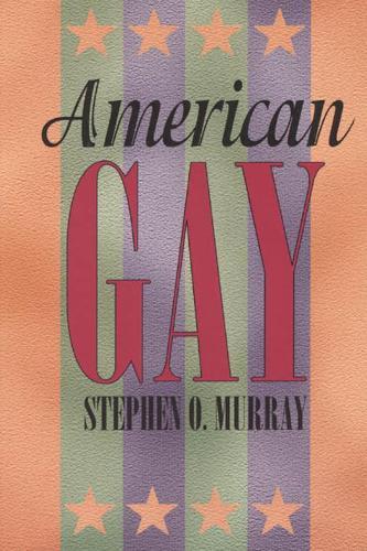 American Gay - Worlds of Desire S. (Hardback)