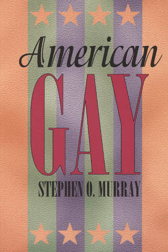 American Gay - Worlds of Desire S. (Paperback)