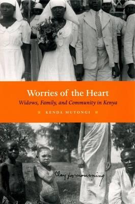 Worries of the Heart: Widows, Family, and Community in Kenya (Hardback)