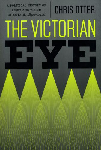 The Victorian Eye: A Political History of Light and Vision in Britain, 1800-1910 (Paperback)