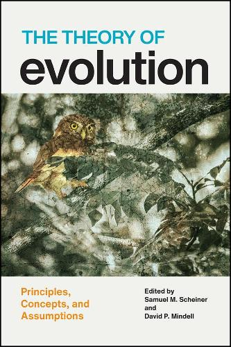 The Theory of Evolution: Principles, Concepts, and Assumptions (Paperback)