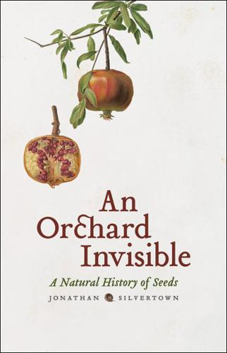 An Orchard Invisible: A Natural History of Seeds (Hardback)