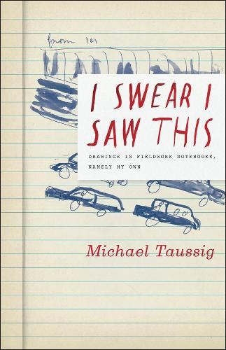 I Swear I Saw This: Drawings in Fieldwork Notebooks, Namely My Own (Paperback)