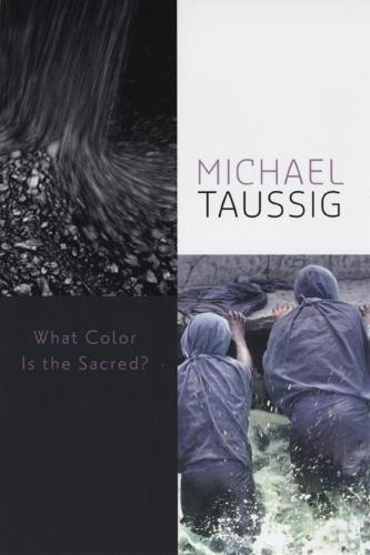 What Color is the Sacred? (Hardback)