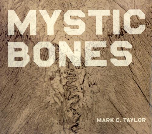 Mystic Bones (Hardback)
