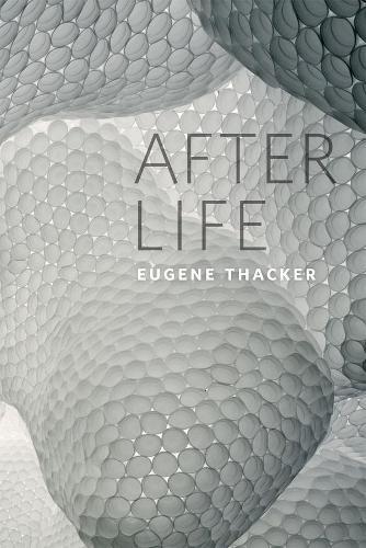 After Life (Hardback)