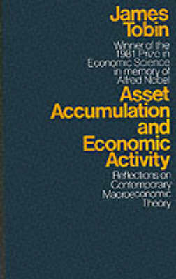 Asset Accumulation and Economic Activity: Reflections on Contemporary Macroeconomic Theory (Paperback)
