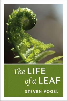 The Life of a Leaf (Hardback)