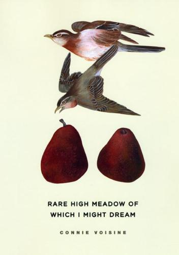Rare High Meadow of Which I Might Dream - Phoenix Poets (Hardback)
