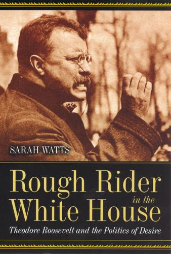 Rough Rider in the White House: Theodore Roosevelt and the Politics of Desire (Paperback)
