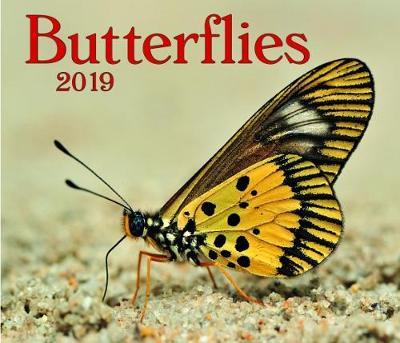 Butterflies 2019 (Calendar)