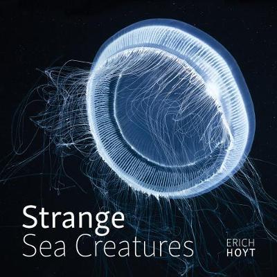 Strange Sea Creatures (Hardback)