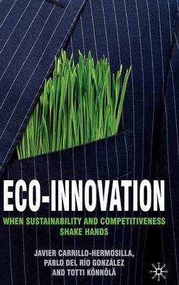 Eco-Innovation: When Sustainability and Competitiveness Shake Hands (Hardback)