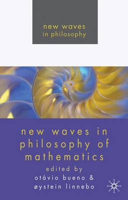 New Waves in Philosophy of Mathematics - New Waves in Philosophy (Paperback)