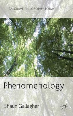 Phenomenology - Palgrave Philosophy Today (Hardback)