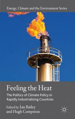 Feeling the Heat: The Politics of Climate Policy in Rapidly Industrializing Countries - Energy, Climate and the Environment (Hardback)