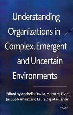 Understanding Organizations in Complex, Emergent and Uncertain Environments (Hardback)