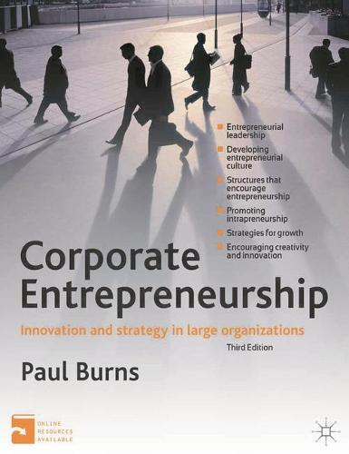 Corporate Entrepreneurship: Innovation and Strategy in Large Organizations (Paperback)