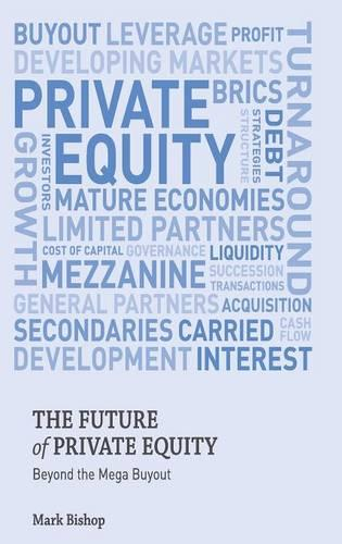 The Future of Private Equity: Beyond the Mega Buyout (Hardback)
