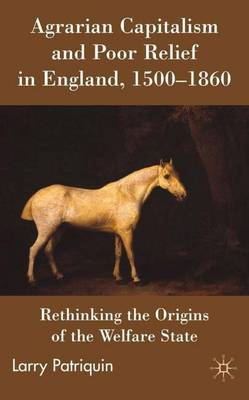 Agrarian Capitalism and Poor Relief in England, 1500-1860: Rethinking the Origins of the Welfare State (Hardback)