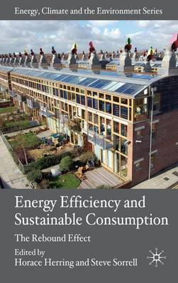 Energy Efficiency and Sustainable Consumption: The Rebound Effect - Energy, Climate and the Environment (Hardback)