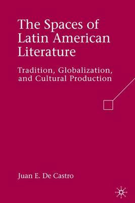 The Spaces of Latin American Literature: Tradition, Globalization, and Cultural Production (Hardback)