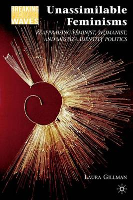 Unassimilable Feminisms: Reappraising Feminist, Womanist, and Mestiza Identity Politics - Breaking Feminist Waves (Hardback)