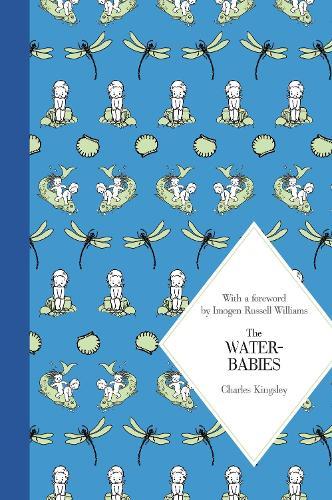The Water-Babies - Macmillan Children's Classics (Hardback)