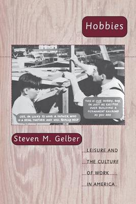 Hobbies: Leisure and the Culture of Work in America (Paperback)