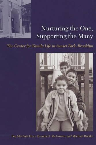 Nurturing the One, Supporting the Many: The Center for Family Life in Sunset Park, Brooklyn (Paperback)