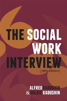 The Social Work Interview (Paperback)