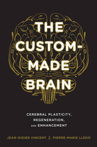 The Custom-Made Brain: Cerebral Plasticity, Regeneration, and Enhancement (Hardback)